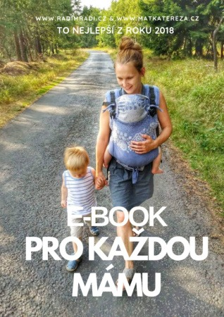 Ebook pro každou mámu